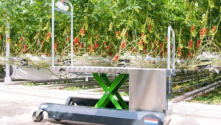 Berkvens Greencart leaf picking trolley   Steenks Service